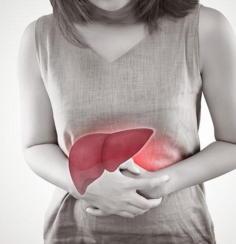 LiverTransplant1.jpg