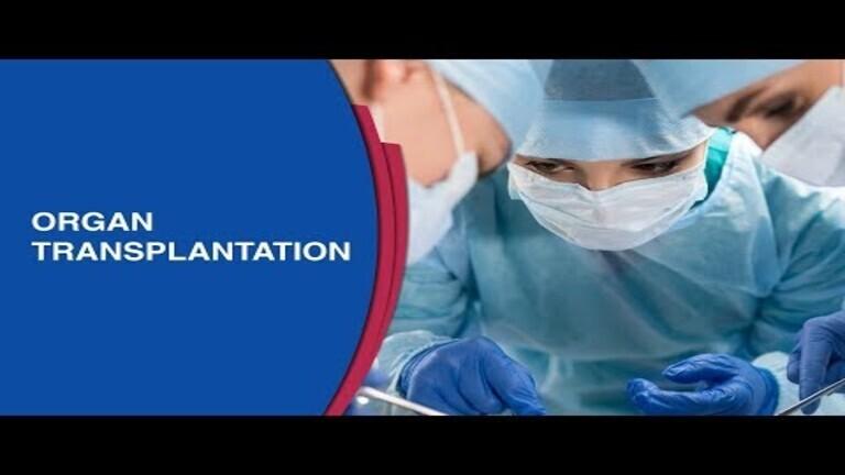 What_is_bone_marrow_transplant.jpg
