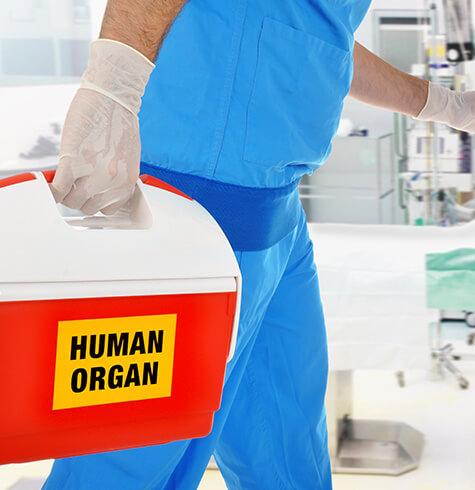 Organ transplantation hospital in Whitefield, Bangalore